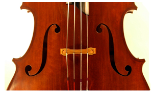 Welcome To Thai Double Bass Association